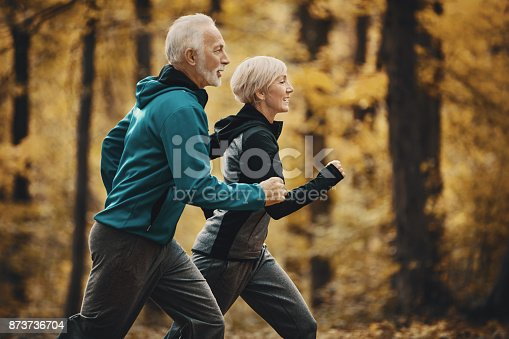 istock Senior couple jogging in a forest. 873736704