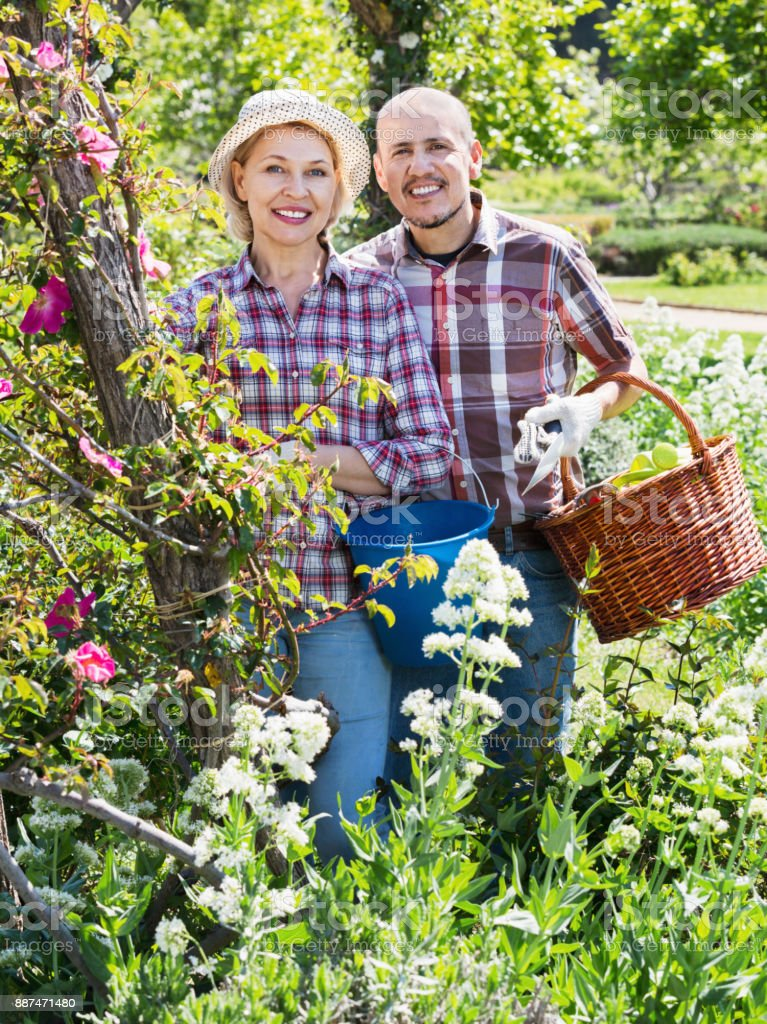 Senior couple looking after flowers in the garden stock photo