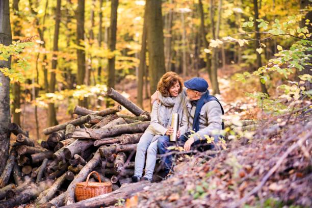 äldre par på en promenad i höst skog. - höst plocka svamp bildbanksfoton och bilder