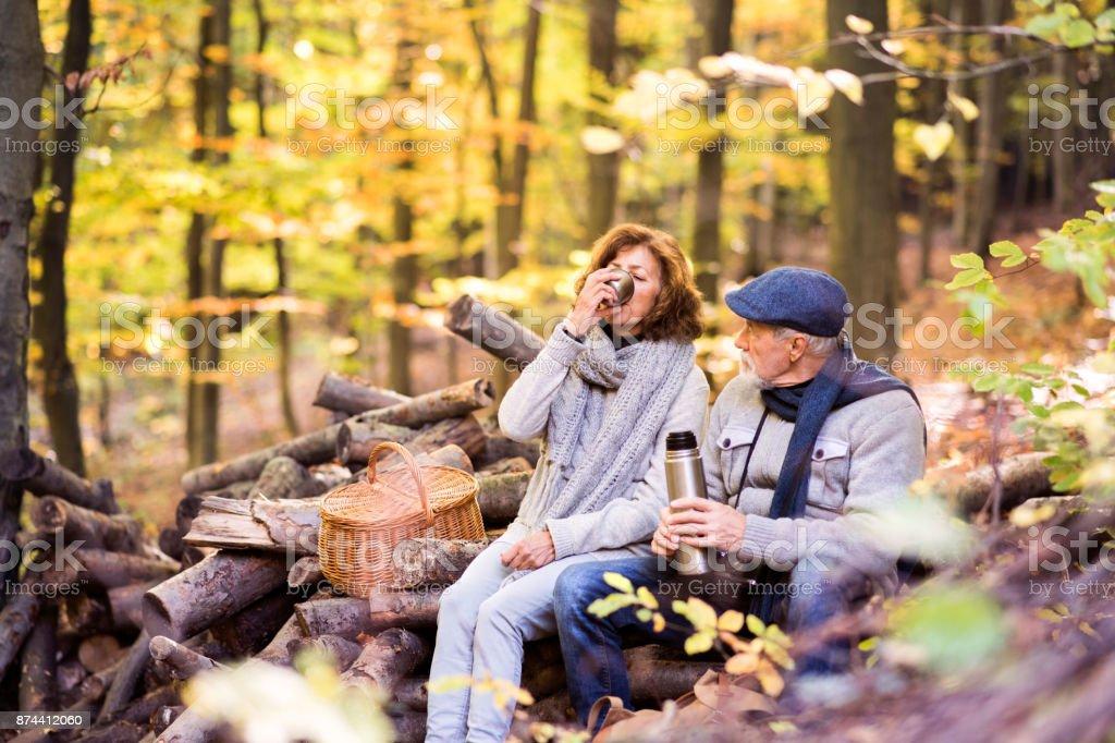 Casal sênior em uma caminhada na floresta de outono. - foto de acervo