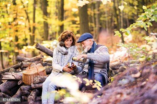 istock Senior couple on a walk in autumn forest. 874412534