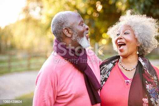 istock Senior Couple On Autumn Walk In Countryside Together 1065439804