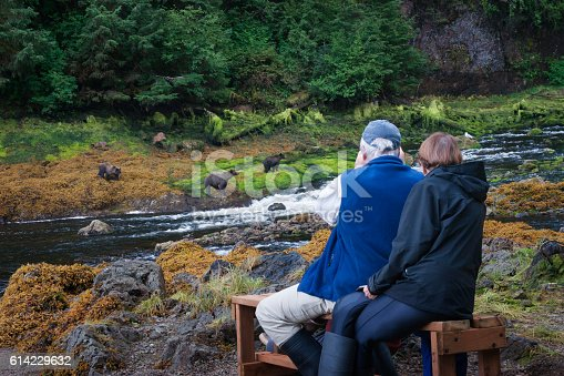 istock Senior couple on bear watching adventure 614229632