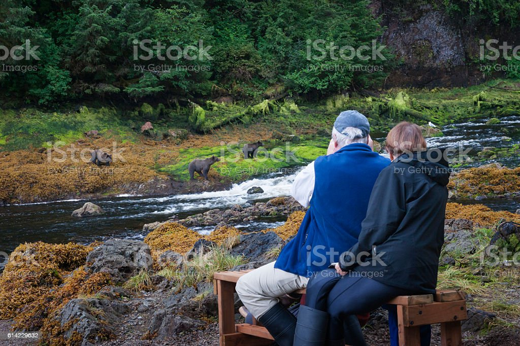Senior couple on bear watching adventure stock photo