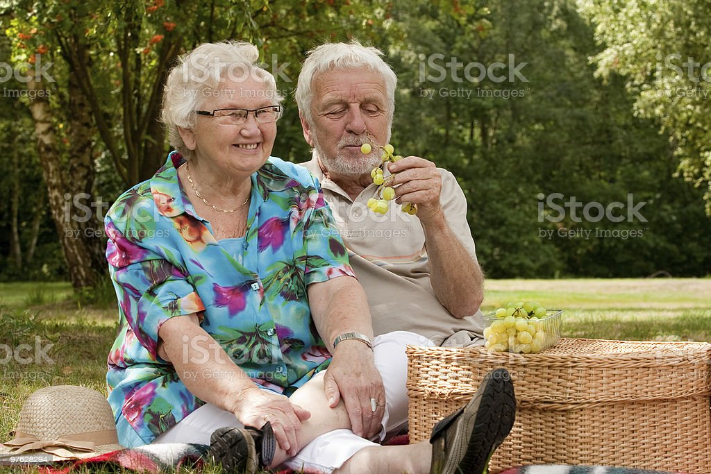 Senior couple picknicking in the park royalty-free stock photo