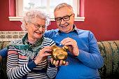 istock Senior couple puts coin to piggy bank 1044741816