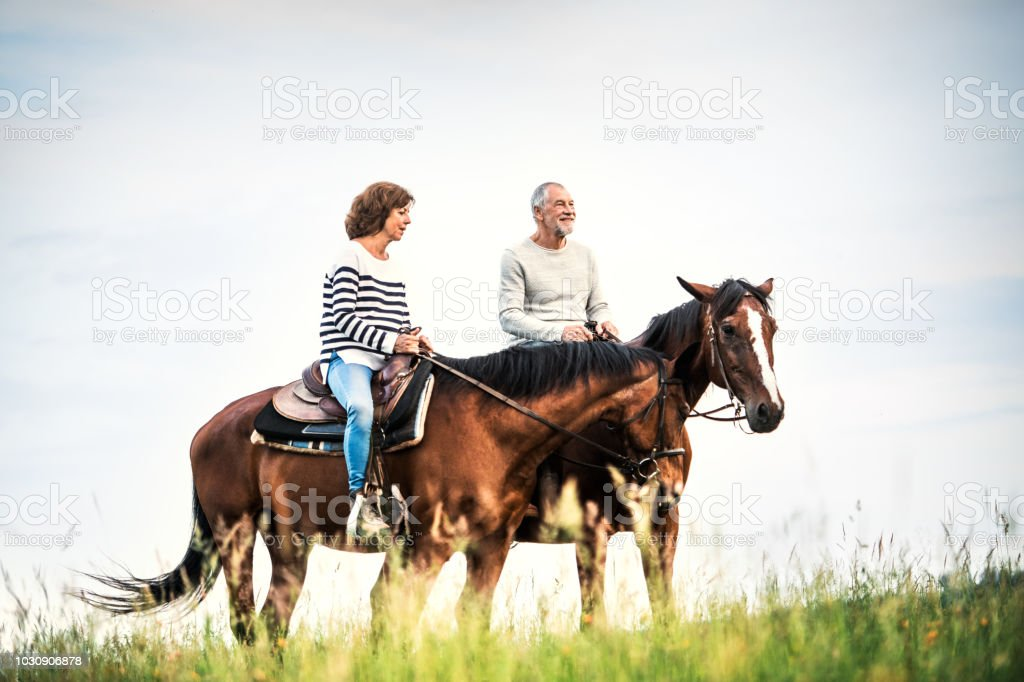 A senior couple riding horses in nature. stock photo