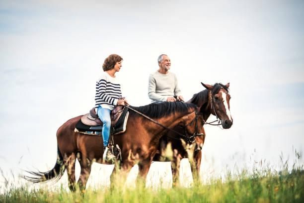 自然の中の馬に乗る年配のカップル。 - 乗馬 ストックフォトと画像