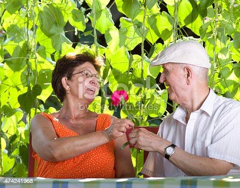 510491454istockphoto Senior couple romance 474241968