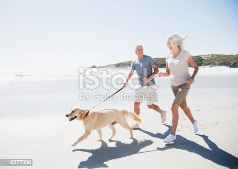 istock Senior couple running on beach with dog 116377336