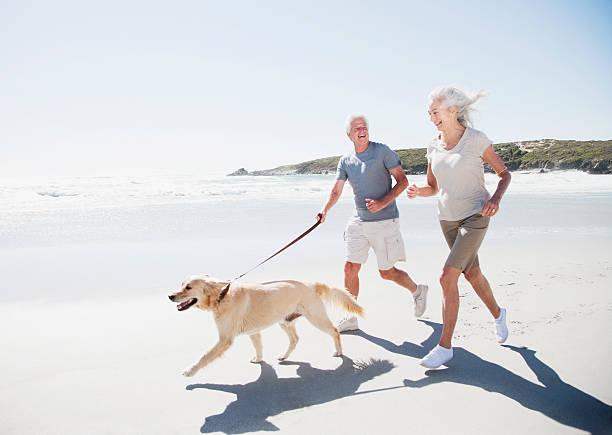 Senior couple running on beach with dog stock photo