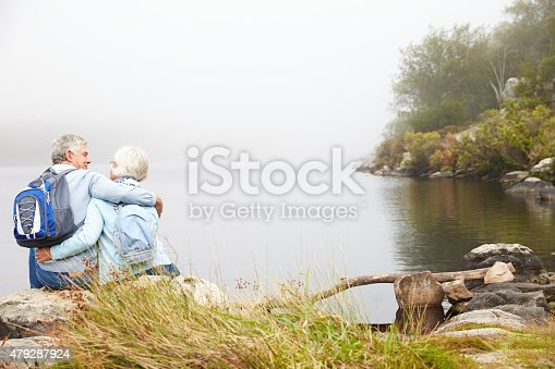 istock Senior couple sit embracing by a lake, back view 479287924