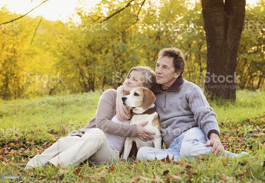 Senior couple sitting in a park with their dog stock photo