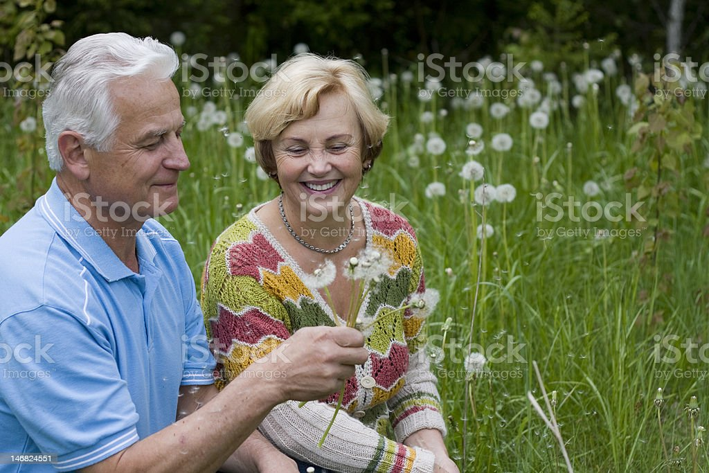 Senior couple sitting in grass royalty-free stock photo