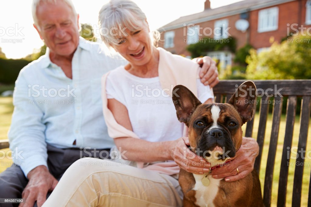 Senior Couple Sitting On Garden Bench With Pet French Bulldog стоковое фото
