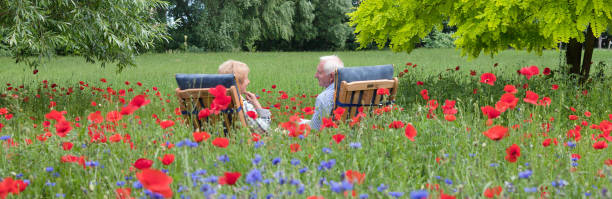 Senior couple sitting on garden chair in blooming meadow stock photo