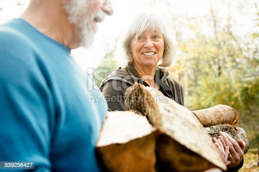 istock Senior Couple Stacking Firewood on the backyard 539258427