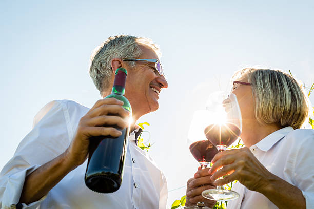 senior couple toasting with wine glasses in vineyard - couple lap stock photos and pictures
