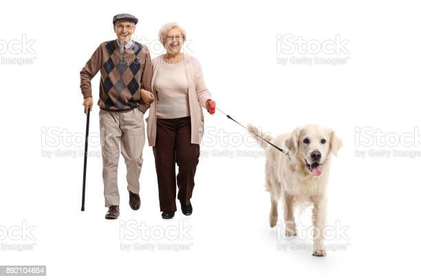 Senior couple walking a dog picture id892104654?b=1&k=6&m=892104654&s=612x612&h=tasyg3xxz3px2eywb8xhsc9kailn8abiewygkb3ilnw=