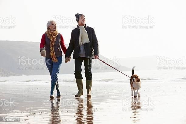 Senior couple walking along winter beach with pet dog picture id501860421?b=1&k=6&m=501860421&s=612x612&h=1y8ljysic0s2c dokoettx0vlolyfn1w8blnd036cf4=