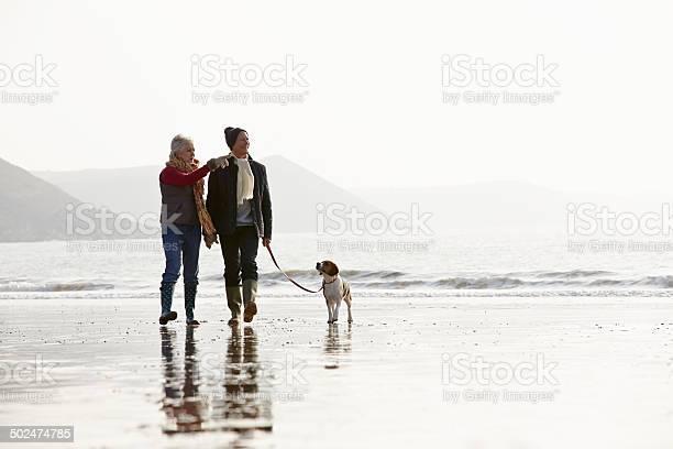Senior couple walking along winter beach with pet dog picture id502474785?b=1&k=6&m=502474785&s=612x612&h=cwkt0h8qe9khy6dwlyd3lr9 nvbkrsdh o0g8pmieio=
