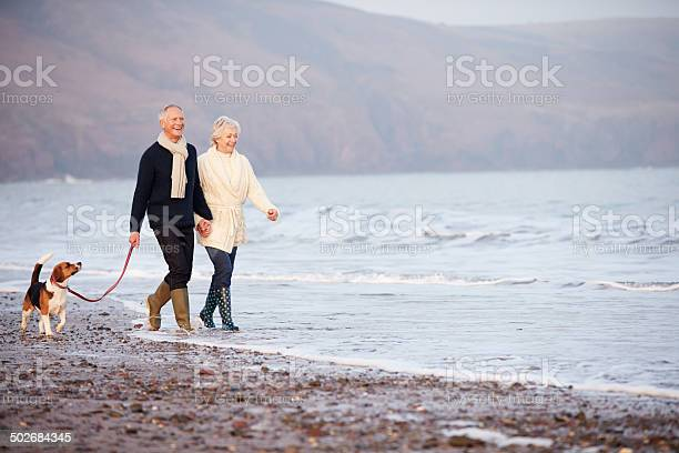 Senior couple walking along winter beach with pet dog picture id502684345?b=1&k=6&m=502684345&s=612x612&h=j5zmidhw1rfhotztgapf36efdsazb2xz3ez8t6sw rq=