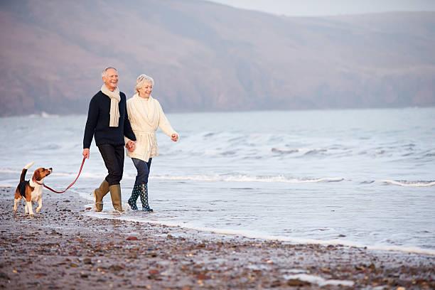 Senior couple walking along winter beach with pet dog picture id502684345?b=1&k=6&m=502684345&s=612x612&w=0&h=3vsmbew013qqbb4yum2ncuoj8fv nsxhylirmdz8pf0=