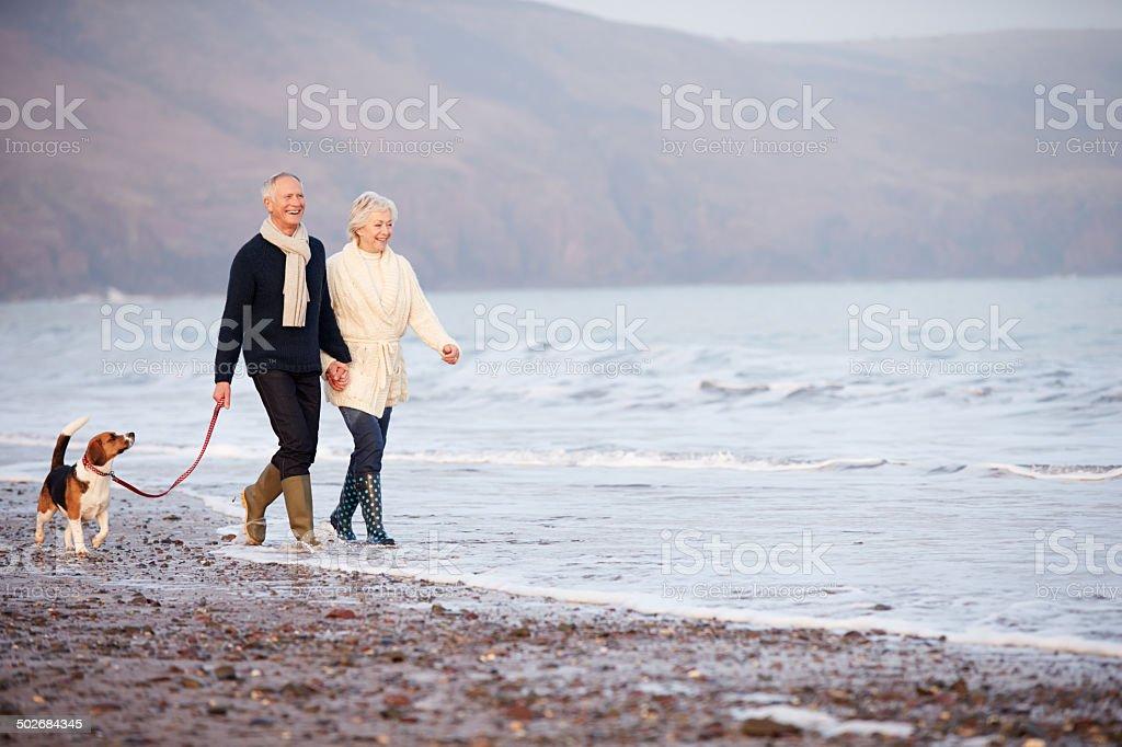 Senior Couple Walking Along Winter Beach With Pet Dog stock photo