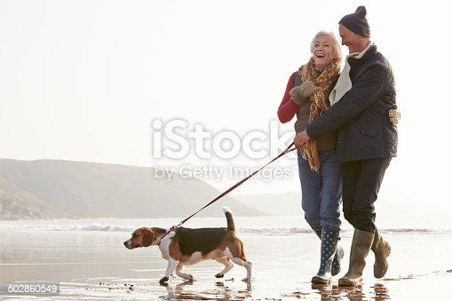 874818944 istock photo Senior Couple Walking Along Winter Beach With Pet Dog 502860549