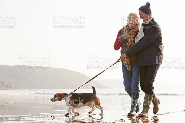 Senior couple walking along winter beach with pet dog picture id502860549?b=1&k=6&m=502860549&s=612x612&h=mrzj5txns63bdfainqaqe3zxlheylkhp6doxxblipx0=
