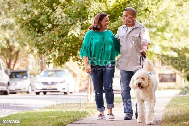 Senior couple walking dog along suburban street picture id905902908?b=1&k=6&m=905902908&s=612x612&h=uo9yjcj1np208ani7hzkpwr 1tj croxp8yd4bnry1s=
