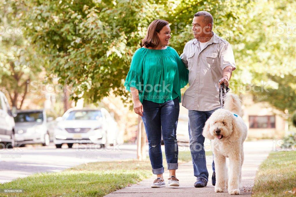 Casal sênior andando o cão ao longo da rua suburbana - foto de acervo