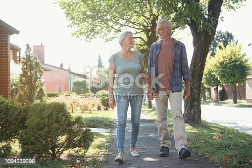 510491454 istock photo Senior couple walking on a sunny day 1094239296