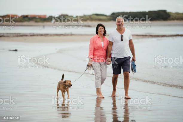 Senior couple walking on the beach with a dog picture id904169206?b=1&k=6&m=904169206&s=612x612&h=ti3jdnhc8kjubzk2wc3bp xwnuvstquqk9 diu5gouk=