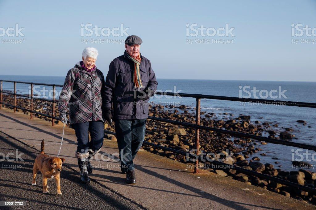 Senior Couple Walking Their Dog Along the Coast stock photo