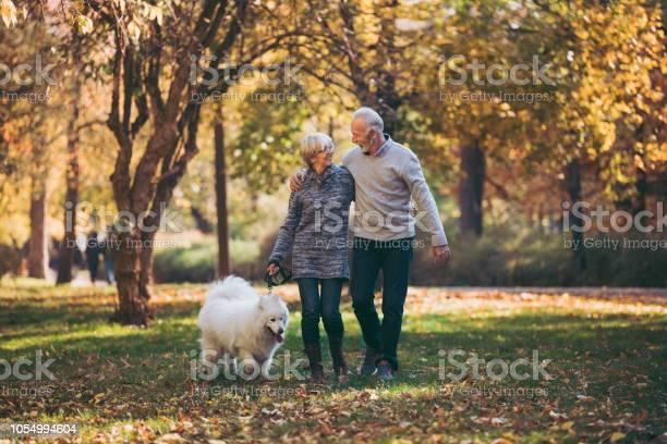 Senior couple walking their dog in park picture id1054994604?b=1&k=6&m=1054994604&s=612x612&h=q6c dqjzwoxcov qrceiqfhf7lragiwogyvsuar6dyc=