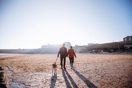 Senior Couple Walking their Dog on the Beach