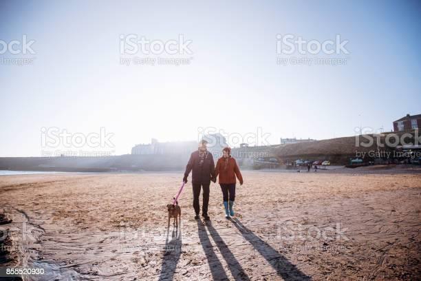 Senior couple walking their dog on the beach picture id855520930?b=1&k=6&m=855520930&s=612x612&h=dt41secakwq0t009znfehkswotwvllqmhu7niislq e=