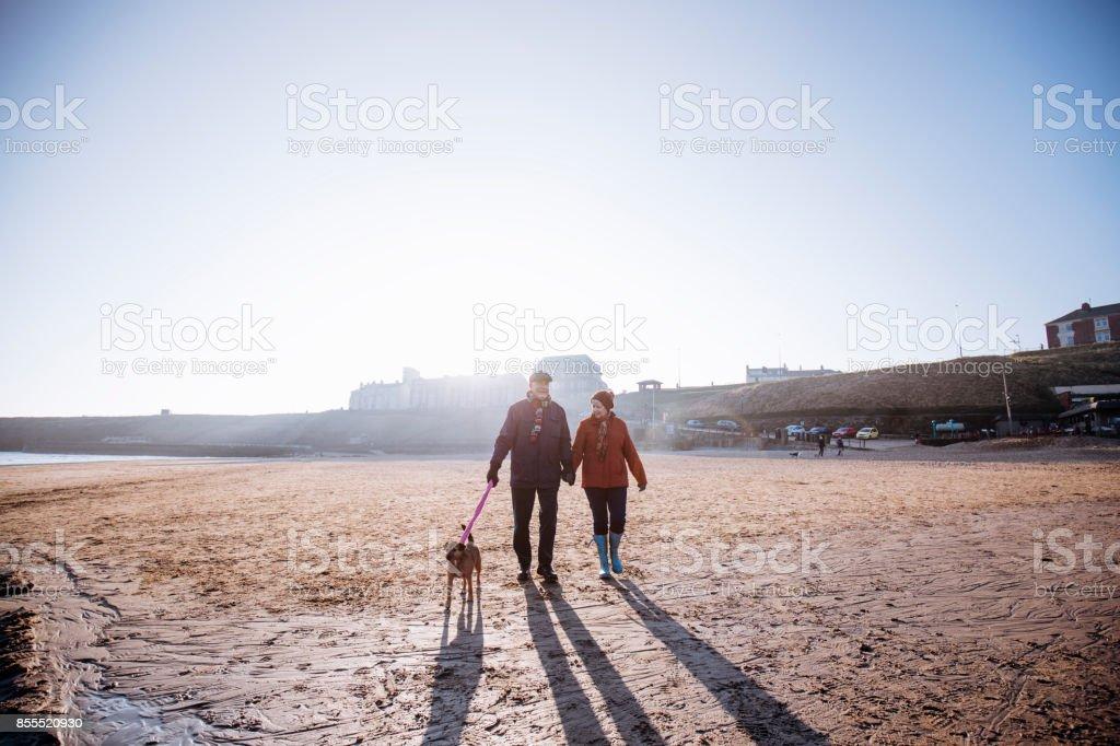 Senior Couple Walking their Dog on the Beach stock photo