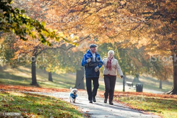 Senior couple walking their dog picture id1148022980?b=1&k=6&m=1148022980&s=612x612&h=zexdbvxe6kebrtyunbmr ocj0zdky tleeghbgle4xo=