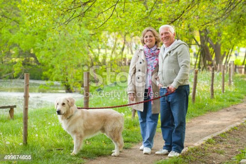 istock Senior couple walking their dog. 499674655