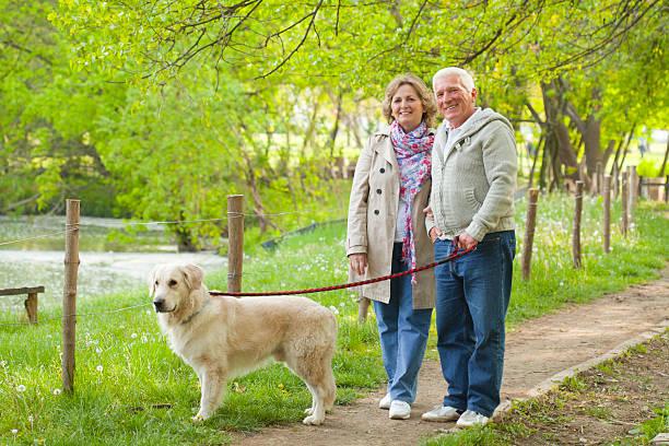 Senior couple walking their dog. stock photo