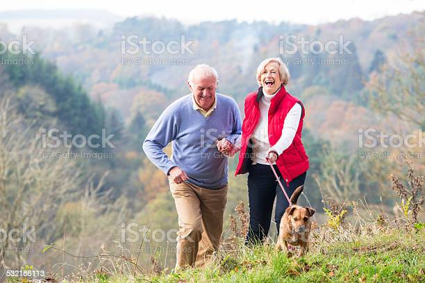 Senior couple walking their dog picture id532186113?b=1&k=6&m=532186113&s=612x612&h=ihhxkol5meyvwsmywxe7bltpdje3prndccfr8sexyai=