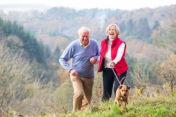 Senior Couple Walking their Dog stock photo