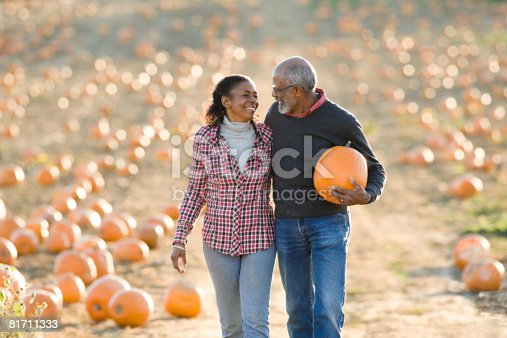 81711567 istock photo A senior couple walking through a field of pumpkins 81711333