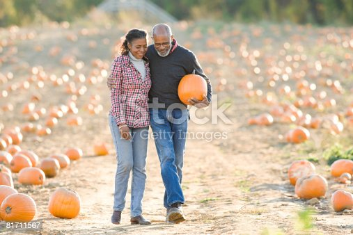 81711567 istock photo A senior couple walking through a field of pumpkins 81711567