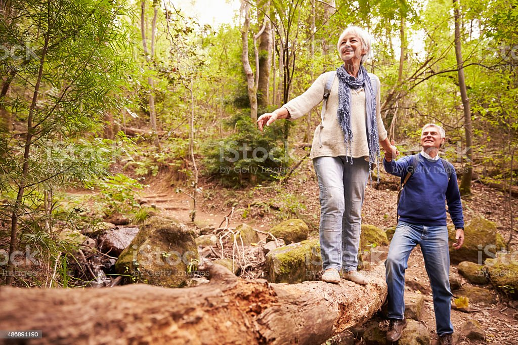 Senior couple walking together in a forest bildbanksfoto
