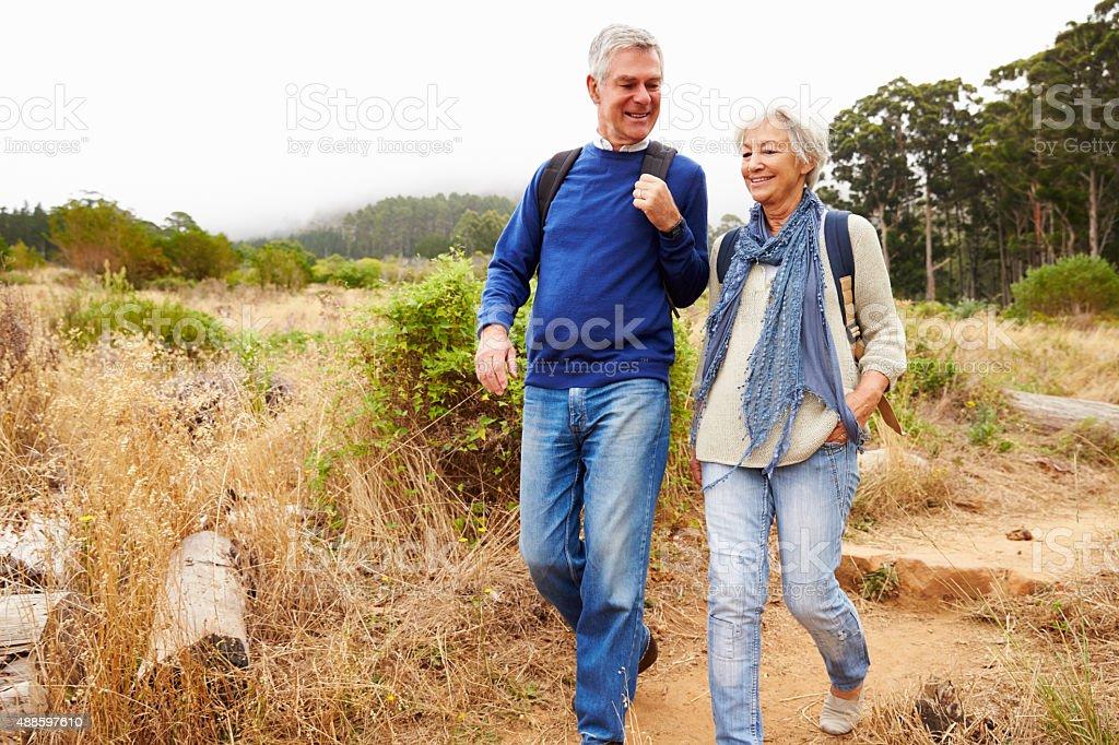 Casal sênior caminhando juntos em uma floresta - foto de acervo