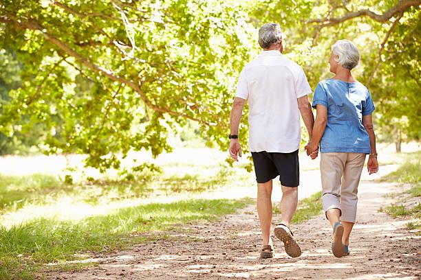senior couple walking together in the countryside, back view - sağlıklı yaşlılar stok fotoğraflar ve resimler