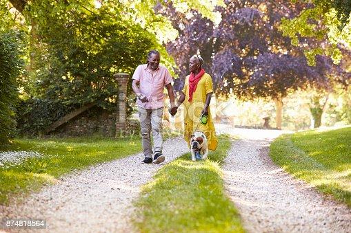 874818944 istock photo Senior Couple Walking With Pet Bulldog In Countryside 874818564